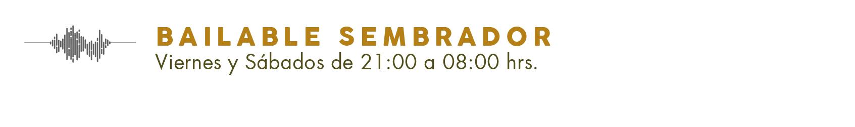 Programa de Radio-10